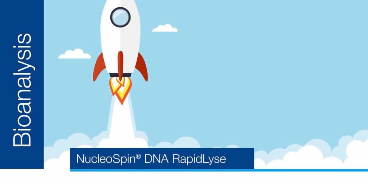 Rapid extraction of genomic DNA