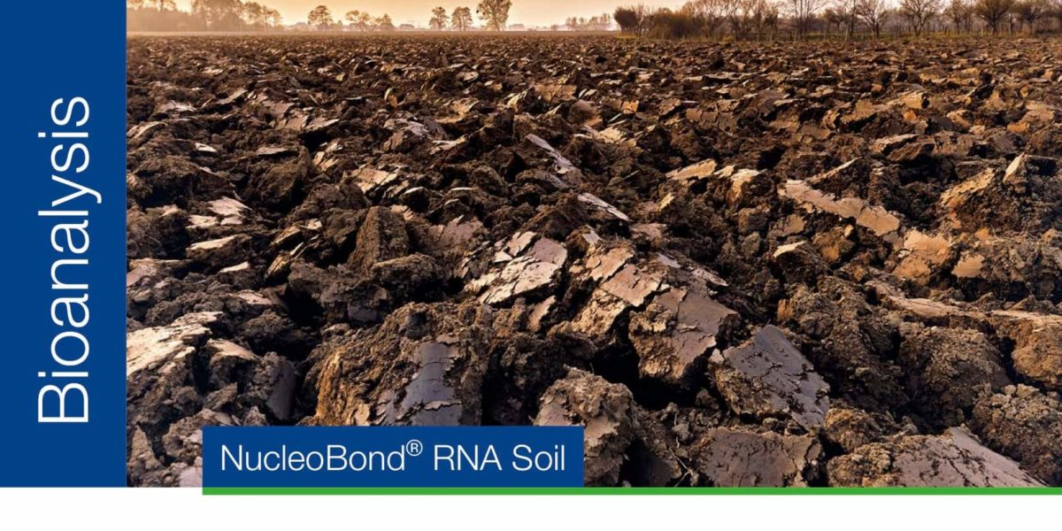 RNA Purification from soil