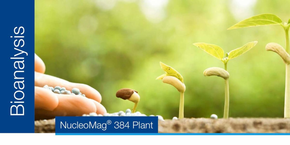 Aislamiento de alto rendimiento de ADN de muestras de plantas