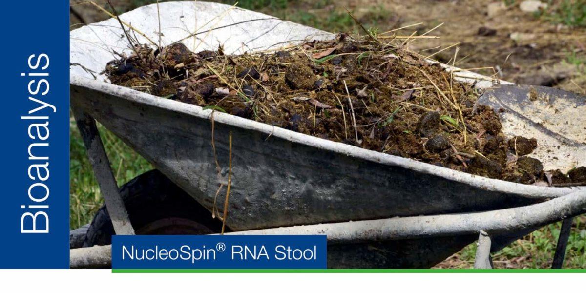 Purificación de ARN de heces