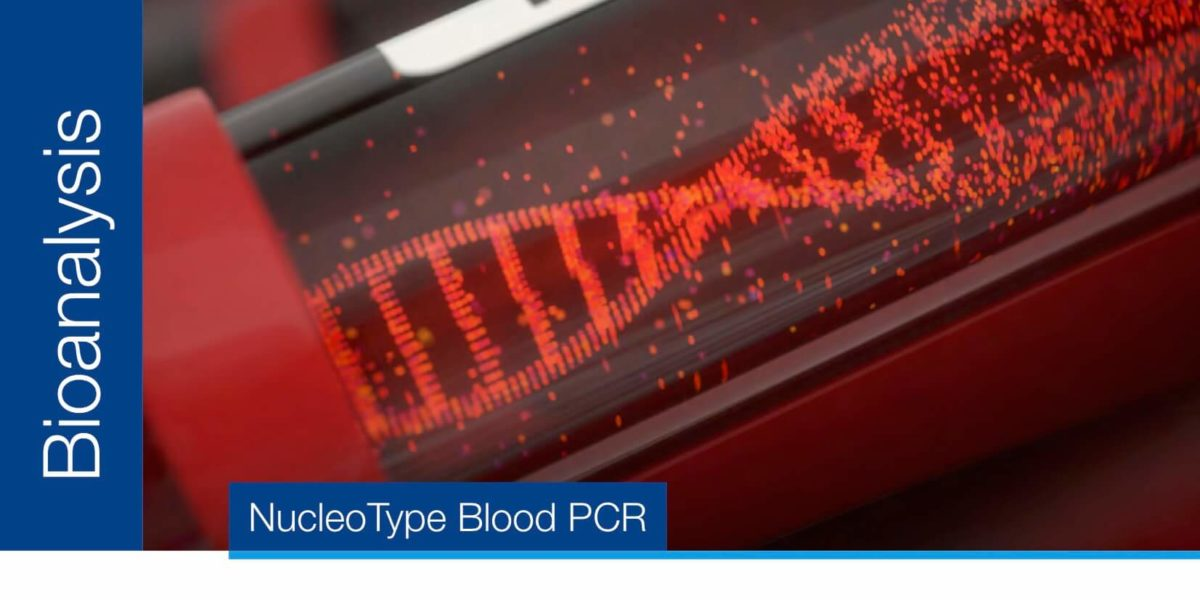 Direct PCR from human and animal blood samples