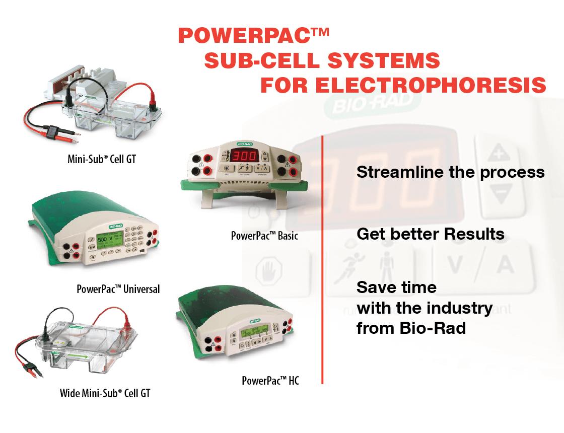 https://www.scientificpanama.com/portafolio-electroforesis-y-western-blot/